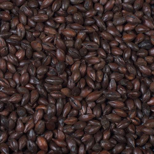 Whole Roasted Barley